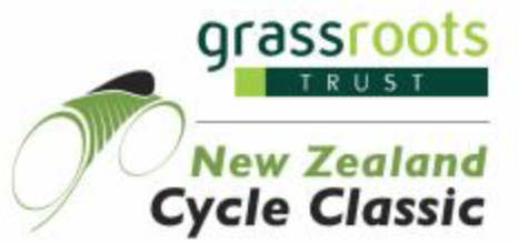 NZCC logo.png